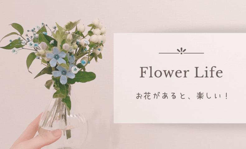 お花の定期便はflowerアプリがシンプル安心でおすすめ♡お家にお花がある幸せ