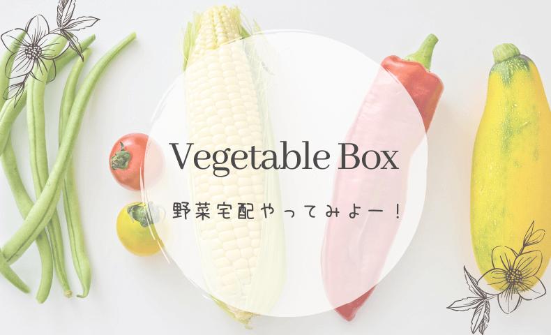 オイシックスが注文できない?他の野菜宅配サービスもみてみよう!