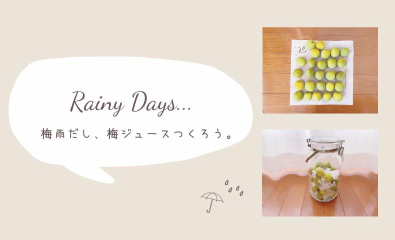 梅雨の楽しい過ごし方「そうだ、梅ジュース作ろう!」